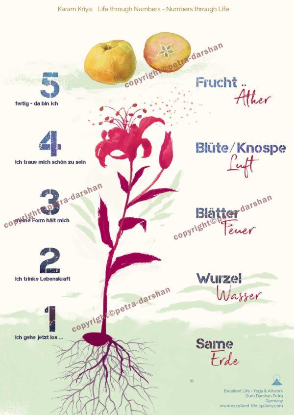 Karam kriya Numerology, Elemente Zahlen Pflanze